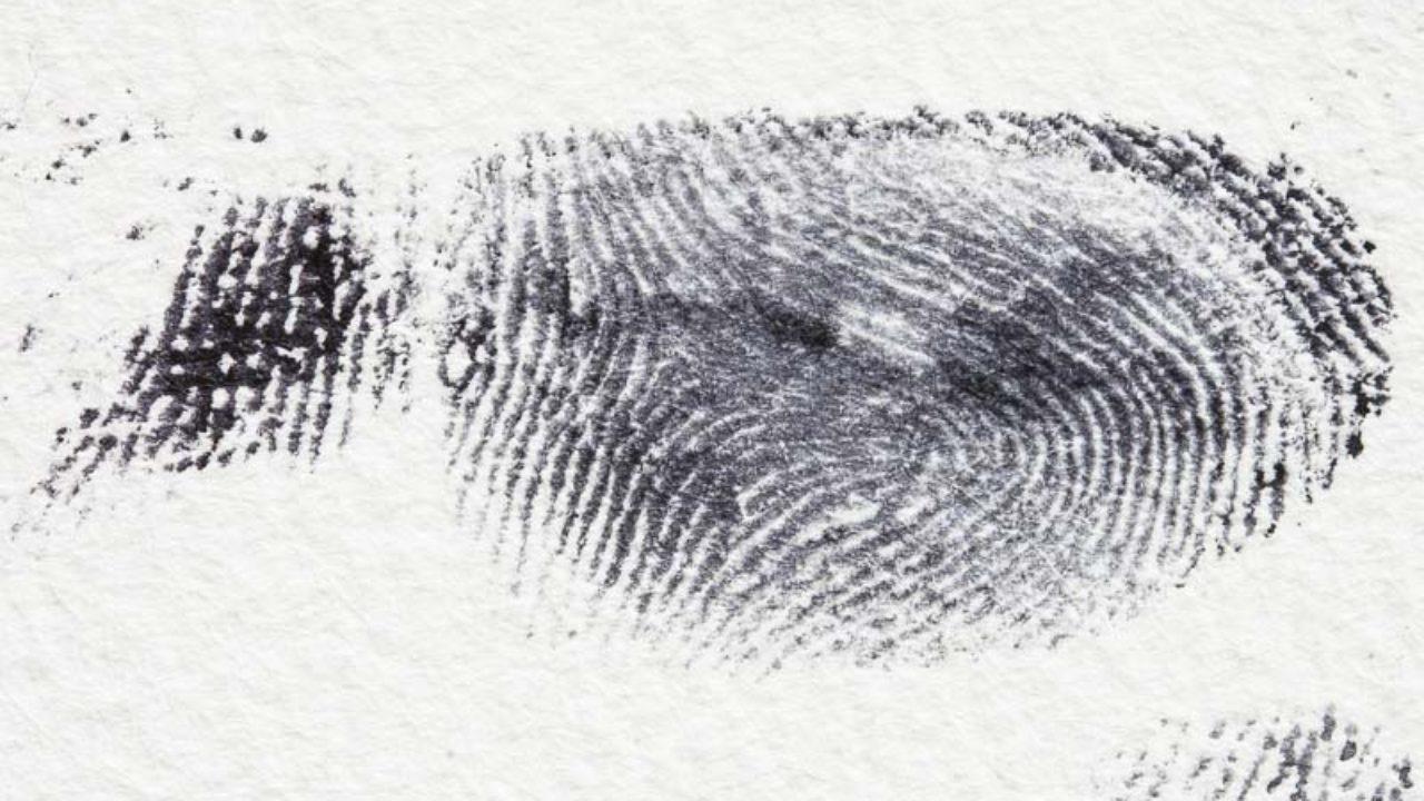 How To Lift Fingerprints Crime Scene Science Hst
