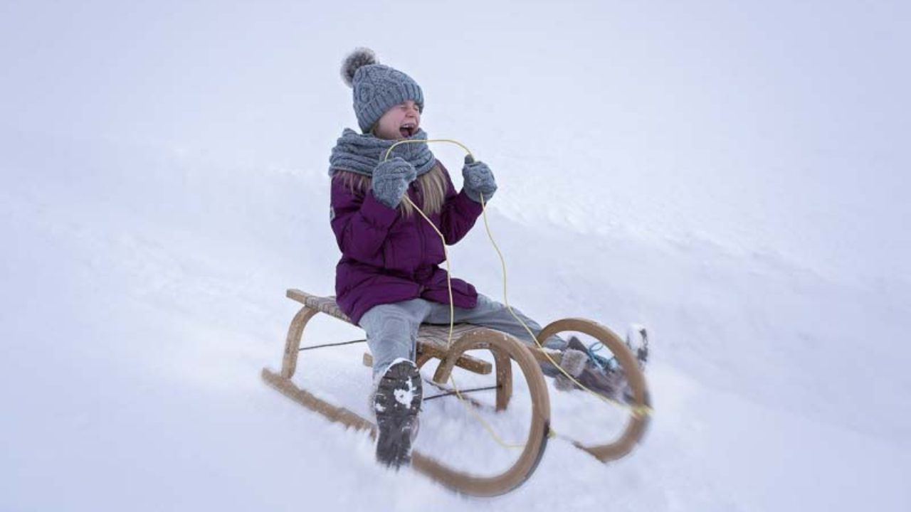 Sledding, Physics & Newton's Laws of Motion: Winter Science